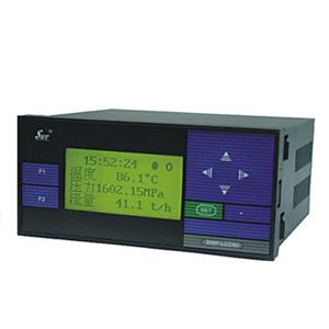 SWP-LCD-NL智能化防盗型记录